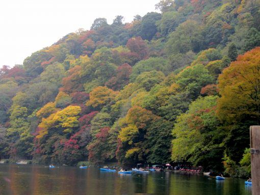 Arashiyama lake in Japan - Autumn leaves in Japan
