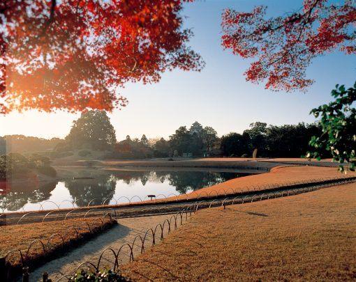 Koishikawa Korakuen gardens in Tokyo - Autumn leaves in Japan