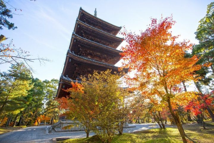 Temple surrounded by autumn leaves, the perfect alternative to cherry blossom