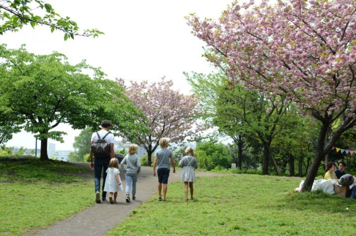 Family travel, Japan cherry blossom with the Adamo kids
