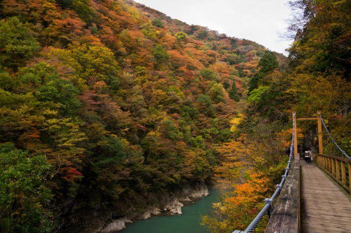 Dakigaeri Gorge, Japan