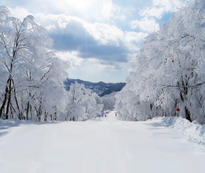 Cortina in the Hakuba Valley