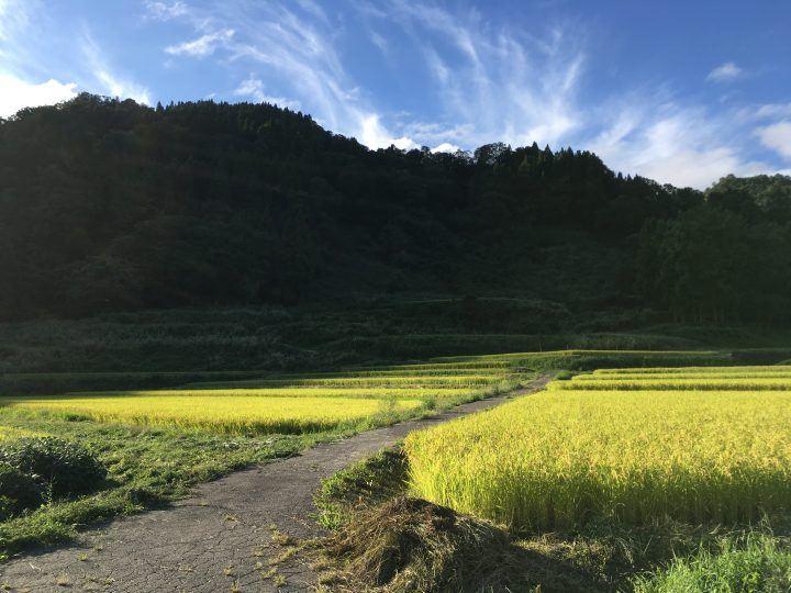 Shin-Etsu Trail, Hiking in Japan