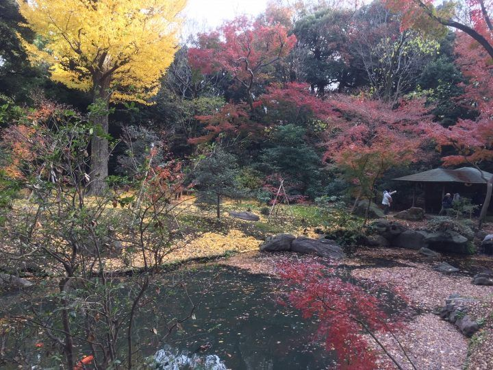 Rikugi-en Gardens, Tokyo