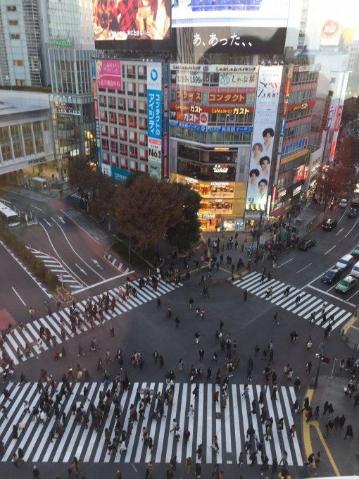 Shibuya Inside Circle Tour, Tokyo, Japan