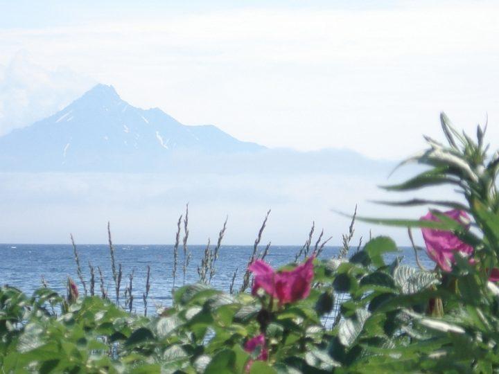 Rebun Island, Hokkaido, Japan