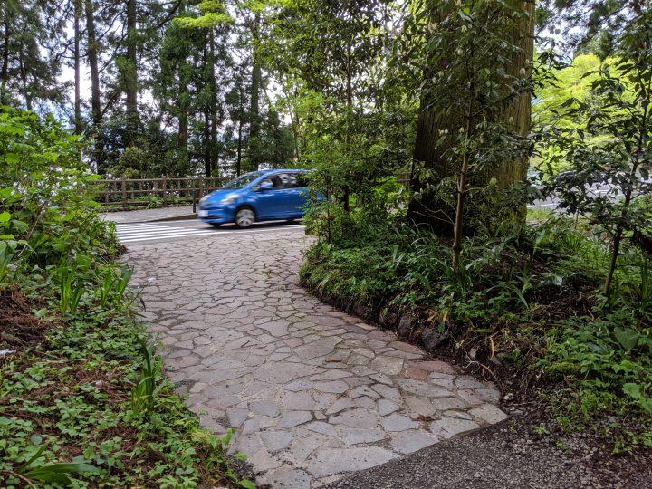 Sekisho-no-Ato Cedar Avenue, Hakone