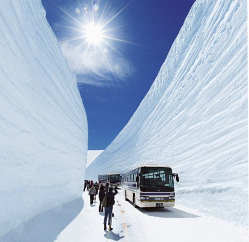 spring in japan Tateyama Kurobe alpine route