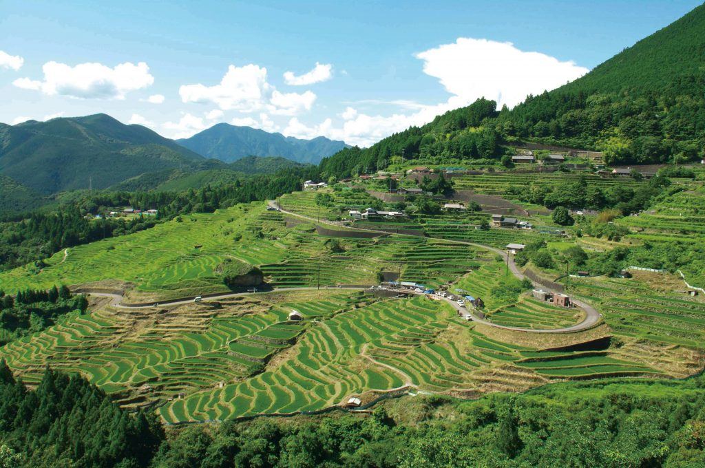 Japanese landscape carved with rice paddies