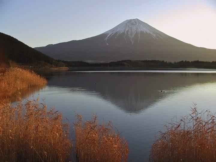Mt Fuji reflection