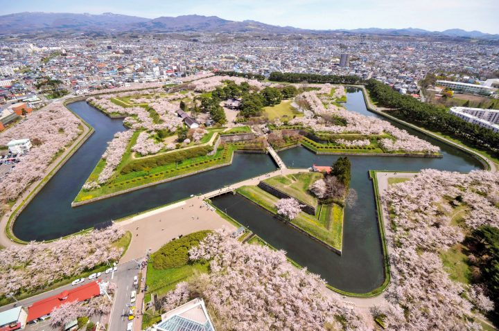 Trees in full bloom in star-shaped island in the middle of the city