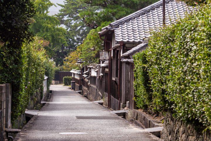 Traditional neighbourhood with an empty street and greenery