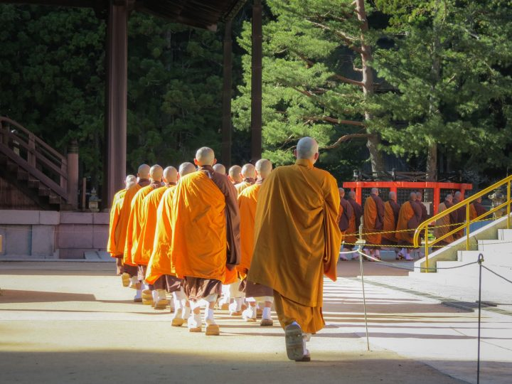 Monks in orange robes walk between temples in the morning sun