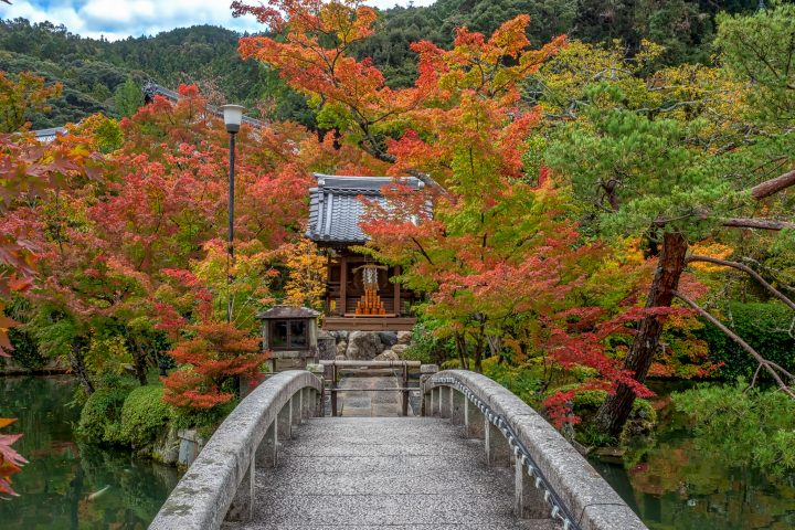 Stone bridge in front of temple in autumn