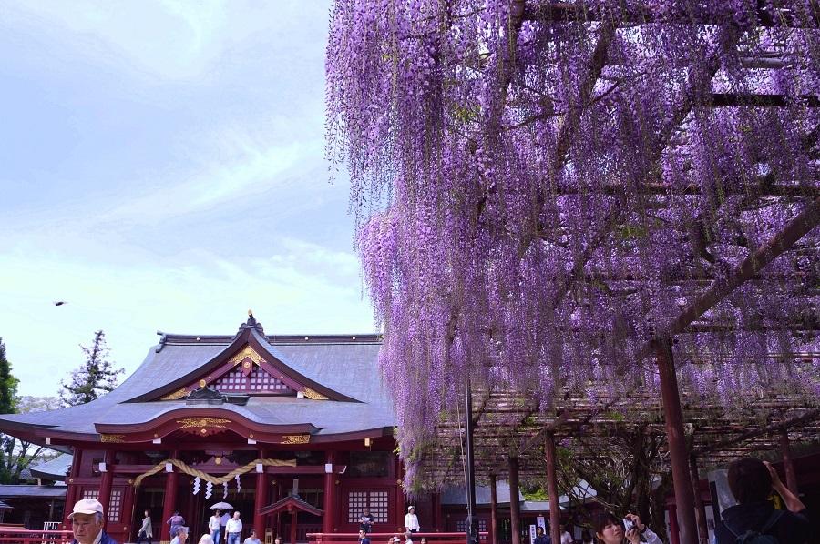 Inari Shrine in Kasama