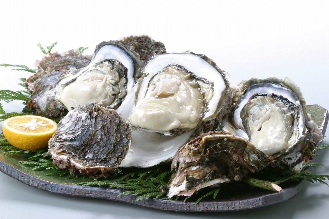 Japanese rock oysters